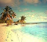 10FT playa escénica foto telón de fondo Fotografía claro agua de mar azul cielo blanco nube niños fondo verano vacaciones fondos para boda
