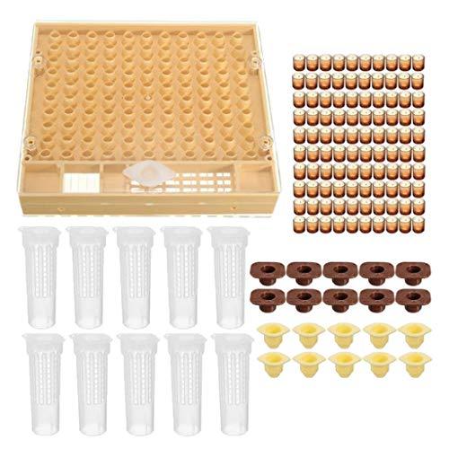 Homyl Kit d'Élevage de Cuvettes de Cellules Boîte de Reine des Abeilles Outils d'Apicoles