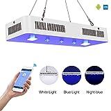 TOPLANET WIFI Led Aquarien Lampe Remote Control Dimmbar...