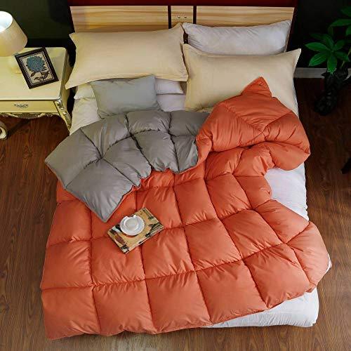 CHOU DAN Bettdecke 200x200cm 4 Jahreszeiten Bettdecke 220x240,GanzjahresbettwäSche Mit Zwei Zimmern, Hypoallergen-150 * 200 cm 3000 G