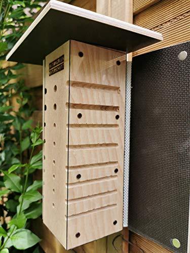 aktiongruen Insektenhotel Wildbienen Beobachtungskasten Nisthilfe