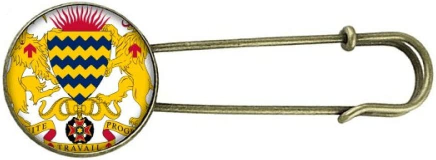 Chad National Emblem Country Ranking integrated 1st place Retro Clip Pin Metal Jewelry Sales Brooch
