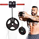 DMoose Forearm Exerciser, Wrist Exerciser and Wrist Roller, Forearm Workout Equipment, Forearm Blaster Strength Trainer and Workout Tool, Hand Grip Roller, Anti-Slip Handles Easy to Use for Athletes