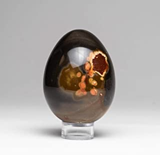 Astro Gallery of Gems Polished Polychrome Egg from Madagascar (313.2 Grams)