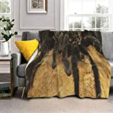 Sherpa Fleece Throw Blanket Cool Mexican Red Rump Tarantula Personalized Warm Cozy Plush Blankets Fuzzy Fluffy Fur Soft Microfiber Comforter Blanket for Couch Bed Sofa Fall Camp Travel Chair Nap 50x60