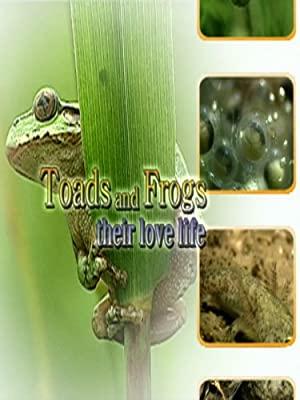 Toads and Frogs - Their Love and Lives