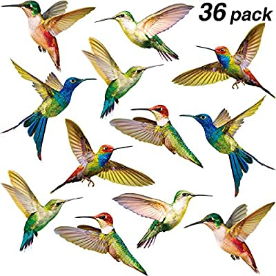 36 Pieces Large Size Hummingbird Decals Anti-Collision Window Clings Non Adhesive Vinyl Cling Hummingbird Stickers to Prevent Bird Strikes on Window Glass