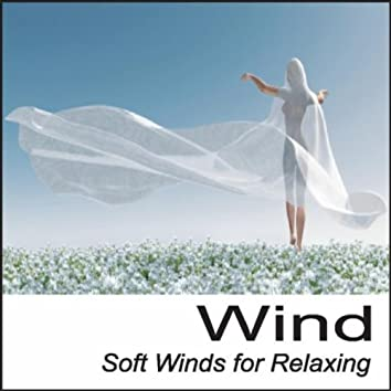 Wind: Soft Winds for Relaxing Nature Sounds Wind Sounds of Wind