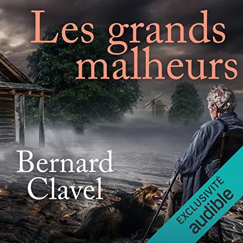 Les grands malheurs  By  cover art