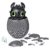 Dreamworks Dragons New and Exclusive at Walmart, Hatching Toothless Interactive Baby Dragon and Bonus Downloadable Episodes