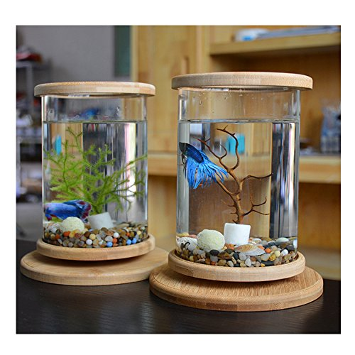 KLSD Kreative LED Desktop Mini Aquarium Desktop-Micro-Zylinder Rotierenden Aquarium Rund 1.5ml Baby Aquarium Geschenk Kind Mann Frau Tochter(Wassergras) (White)