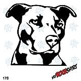 Pitbull Kopf Hundeaufkleber Auto Wandtattoo Dog 20 cm Hund Hunde Sticker Autoaufkleber Auto Aufkleber Hundeaufkleber `+ Bonus Testaufkleber 'Estrellina-Glückstern'und Estrellina-Montage-Rakel, gedruckte Montageanleitung 'myrockshirt', waschanlagenfest,Profi Qualität Aufkleber, Tuning,Sticker,Autoaufkleber,Heckscheibe,Lack,Autologo