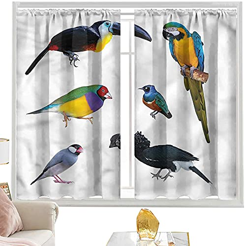 cortinas térmicas pájaros, loro tropical java gorrión w52 x l95 pulgadas cutainsforlivingroom