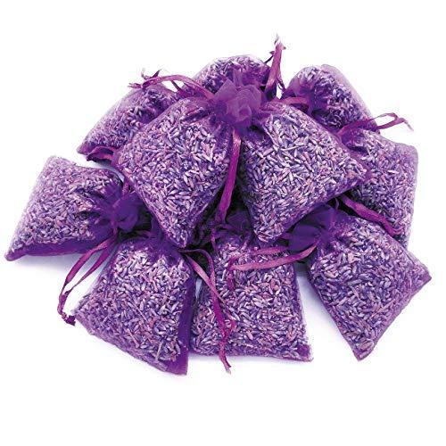 OLILLY Récolte 2020-12 Sachets Violets Foncés avec Lavande de Provence - 120 grammes de Lavande Naturelle (Mauve, 12 Sachets)