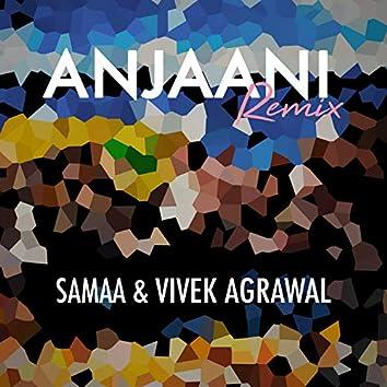 Anjaani (Remix)