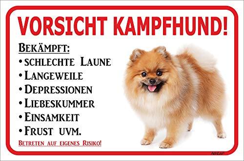 AdriLeo Schild - Vorsicht GELBER Spitz Zwergspitz Pomeranian Kampfhund (20x30cm)