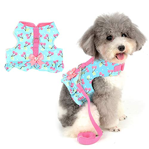 Zunea No Pull Small Dog Girl Harness Dress Escape Proof Cat Kitten Vest Harness Leash Set Step-in Soft Cotton Padded Cherry Printed Jacket Chihuahua Puppy Clothes with Bow for Walking Blue XS