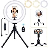 10' Ring Light Tripod Stand with Remote Control for YouTube Video, Live Streaming, Mini LED Camera Light with Mirror, Cell Phone Holder Desktop with 3 Light Modes for Makeup, Photography and Selfie