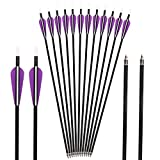 Huntingdoor 12pack Archery Arrows Carbon Arrows 350 Spine 31'' Targeting Arrows Hunting Shooting Practice Screw-in Field Points Rotate Nock Purple Vanes for Recurve Bow Compound Bow Longbow