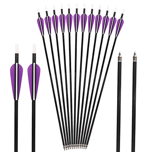 Huntingdoor 12pack Archery Arrows Carbon Arrows 350 Spine 31