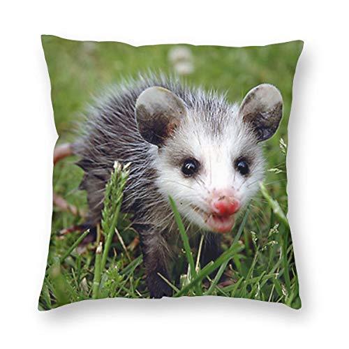 Funda de almohada de lino y algodón, 45,7 x 45,7 cm, diseño de animales