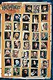 Harry Potter Characters Unisex Poster Mehrfarbig Papier 61