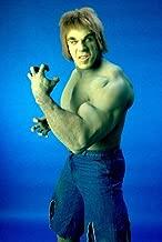 Lou Ferrigno The Incredible Hulk 24X36 Poster