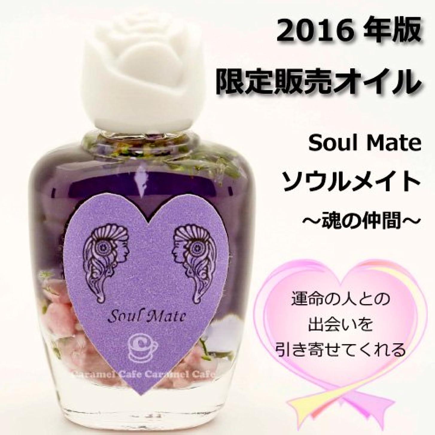 理論的普及説教SEDONA Ancient Memory Oilsセドナ アンシェントメモリーオイル 2016年版限定販売オイル Soul Mate~魂の仲間~ 15ml