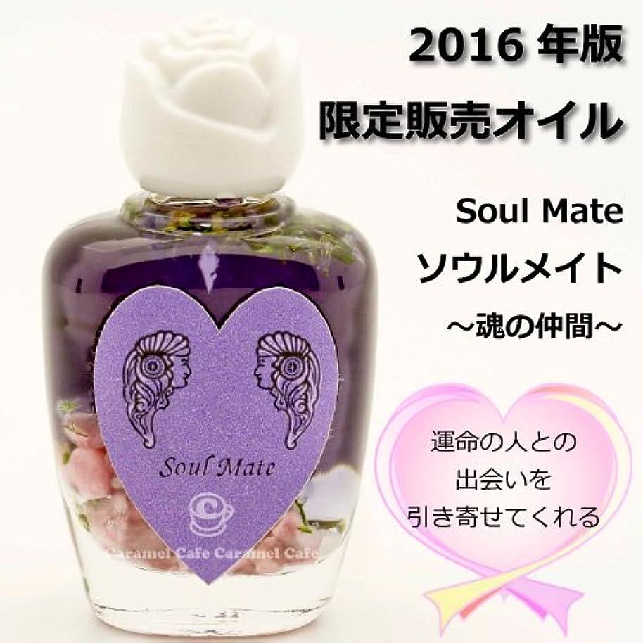 創造暴露メールを書くSEDONA Ancient Memory Oilsセドナ アンシェントメモリーオイル 2016年版限定販売オイル Soul Mate~魂の仲間~ 15ml