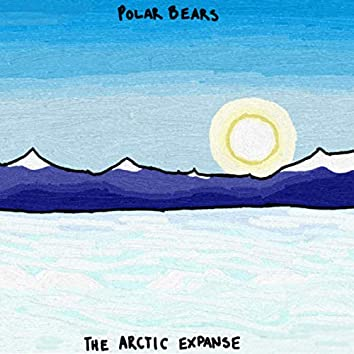 The Arctic Expanse