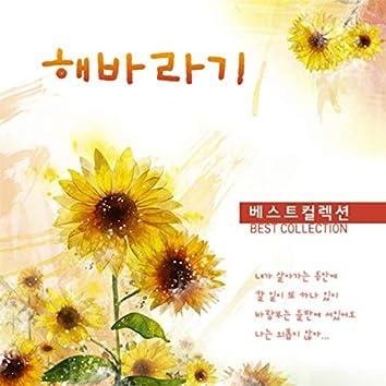 Sunflower Best Collections(해바라기 베스트 컬렉션)
