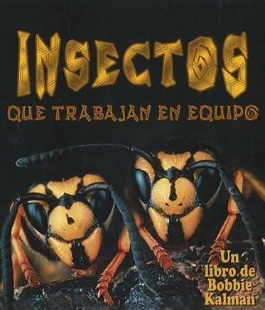 Insectos Que Trabajan en Equipo (Mundo de los Insectos) (Spanish Edition) by Molly Aloian (2006-03-01)