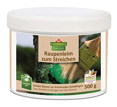 Florissa Raupenleim zum Streichen 500 g