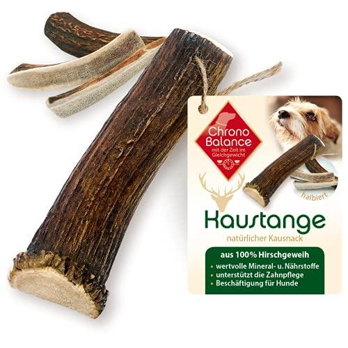 ChronoBalance® Barra para masticar L (semidoblada) para perros, 100% cuernos de ciervo, juguete para masticar, cuidado dental, aperitivo, cornamenta, hueso para masticar