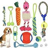 AYUQI Juguetes para Perros, 10 Piezas Cuerda de Juguete para Perro Durable Masticable Perro Masticar Juguete de Entrenamiento de Dientes para Cachorros Pequeños Medianos Grandes Perros