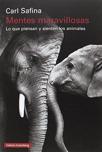 Mentes maravillosas: Lo que piensan y sienten los animales (Rústica)