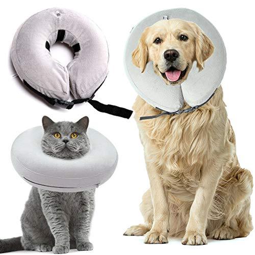 PetAZ Pet Recovery Inflatable Collar