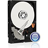 Western Digital Blue WD2500AAJB 250GB 7200 RPM 8MB Cache IDE Ultra ATA100 / ATA-6 3.5' Internal Hard Drive Bare Drive for PC, Mac, CCTV, Tivo, DVR, NAS, RAID- 1 Year Warranty