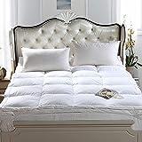 WZF Topper de colchón de Pluma y plumón de Ganso Topper de Cama 100% algodón Shell Tratamiento Antipolvo Almohadilla de colchón Top de Cama cálido y Suave (Doble) (Color: A Tamaño: 100x200cm (