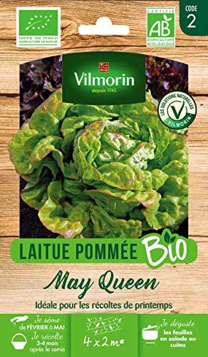 Vilmorin - Laitue May Queen bio - variété précoce et rustique - facile à réussir - Très savoureuse - rendement 10 salades/m²