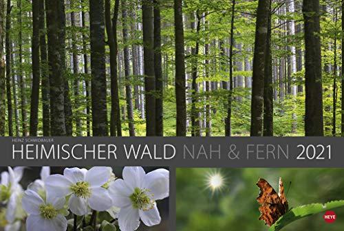 Heimischer Wald nah & fern - Kalender 2021 - Heye-Verlag - Heinz Schmidbauer - Wandkalender 58 cm x 39 cm