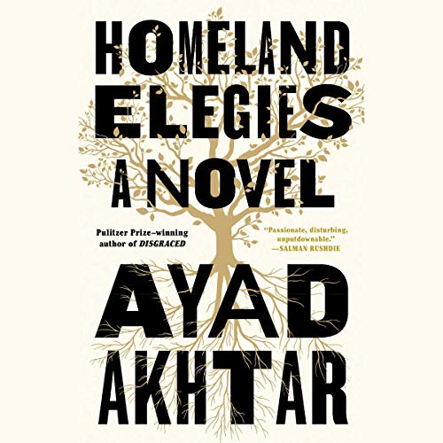 Homeland Elegies cover art