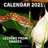 Lessons From Snakes Calendar 2021: November 2020 - December 2021 Square Photo Book Monthly Planner Calendar With Snake Inspirational Quotes