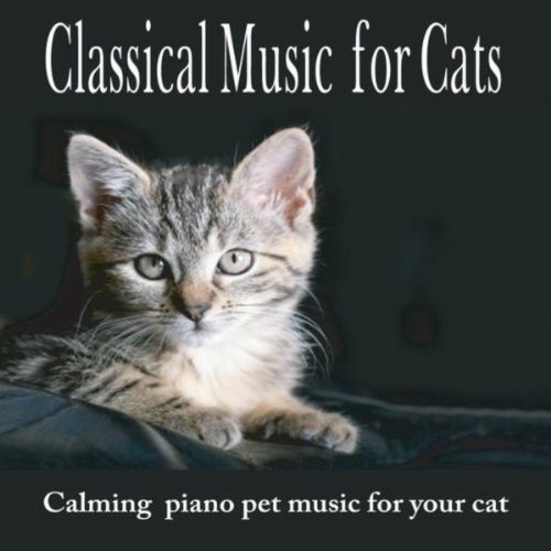 Classical Music For Cats: Calming Pet Music