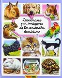 Diccionario Por Imágenes De Los Animales Domésticos