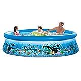Intex 28125EH 10ft X 30in Ocean Reef Easy Set Pool Set...