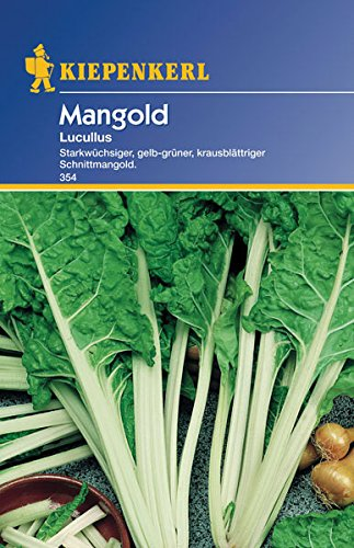 Sperli 354 Gemüsesamen Mangold Lucullus, grün