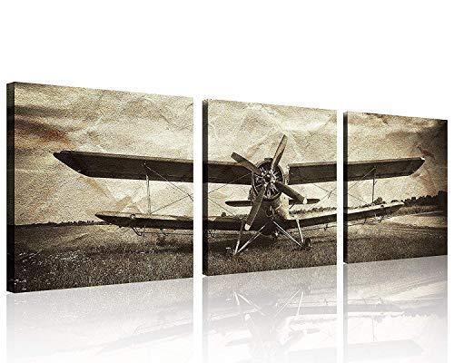 3 Panels Vintage Plane Picture