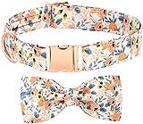 Collar para perros, pajarita, para niñas, collar para cachorros, diseño de flores, collar para cachorros personalizado, collar para perros con arco para perros grandes, medianos y pequeños