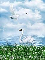 ナンバーキットによるDIY5Dダイヤモンド絵画、クリスタルラインストーンダイヤモンド刺繍絵画写真家の壁の装飾のためのアートクラフト、フルドリル(40x50cm)白鳥のダイヤモンド絵画